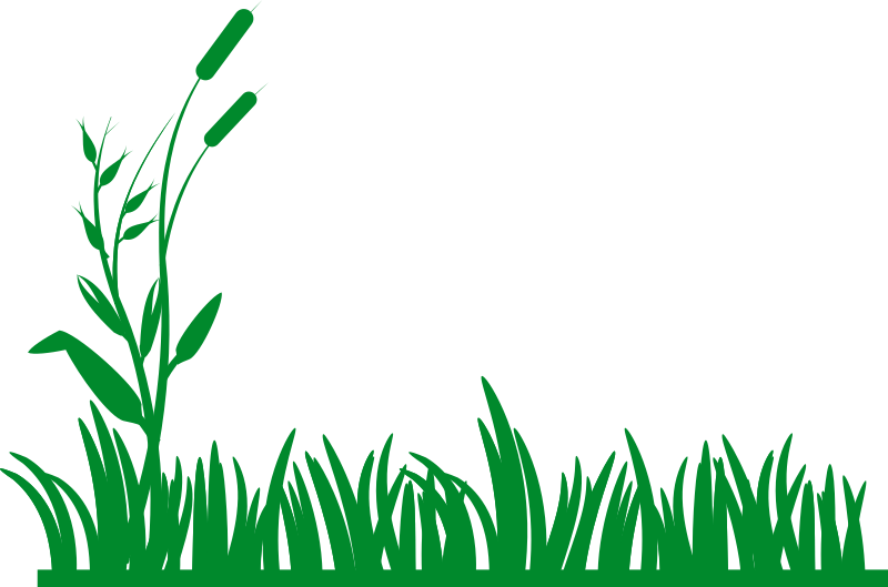 Grass Background By Rg1024   A Grass Background Silhouette
