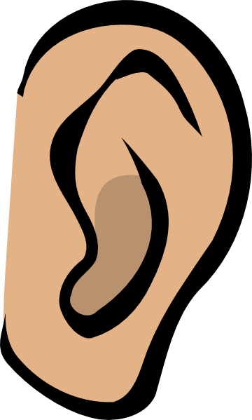Ear   Body Part Clip Art At Clker Com   Vector Clip Art Online