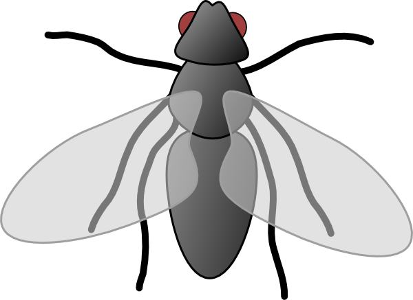 Fly3 Clip Art Vector