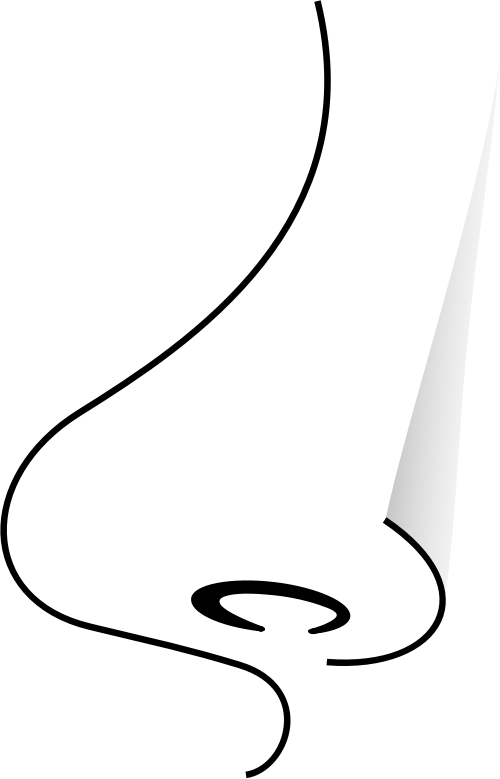 Nose By Frankes Simple Drawing Of A Nose Q93zwg Clipart additionally Stock Images Cartoon Jeans Black White Line Retro Style Vector Available Image37026134 as well Cleopatra 283193466 further 2570 as well How To Draw An Assassin. on simple clothes drawing