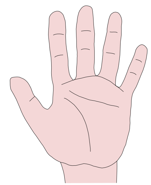 Clip Art Clipart Hands open hands clipart kid illustration hand clip art praying an open