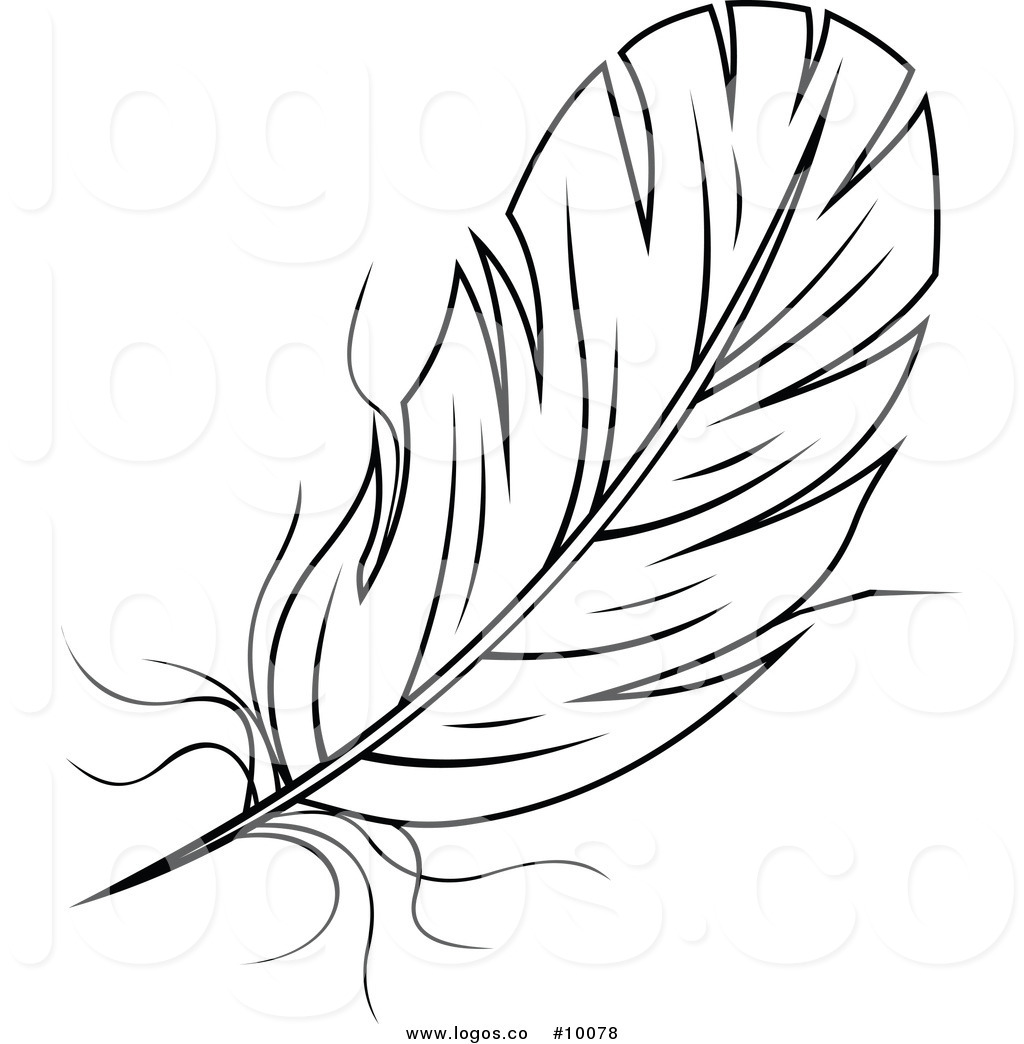 Feather Clipart Black And White A Black And White Feather