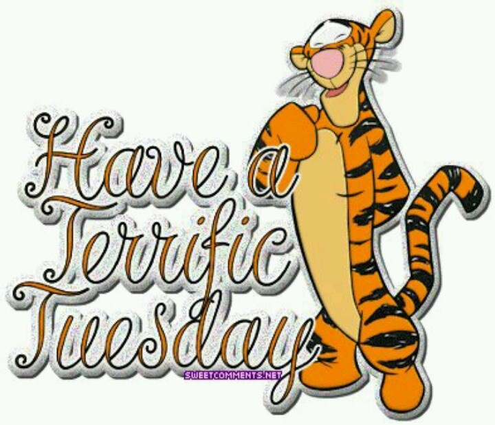 Image result for terrific tuesday images