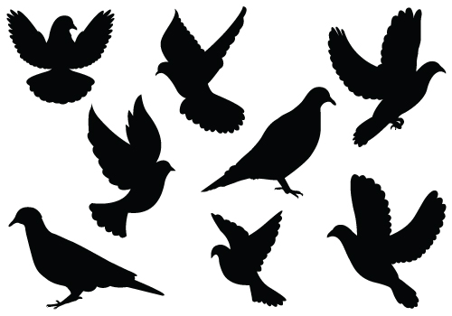 Dove Silhouette Vector Clipartcategory  General Vector Graphics