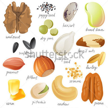 Source File Browse   Food   Drinks   Edible Seeds Nuts And Beans