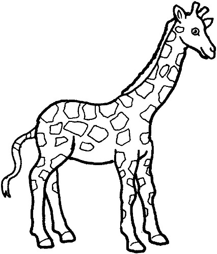 Giraffe Black And White Clipart - Clipart Kid