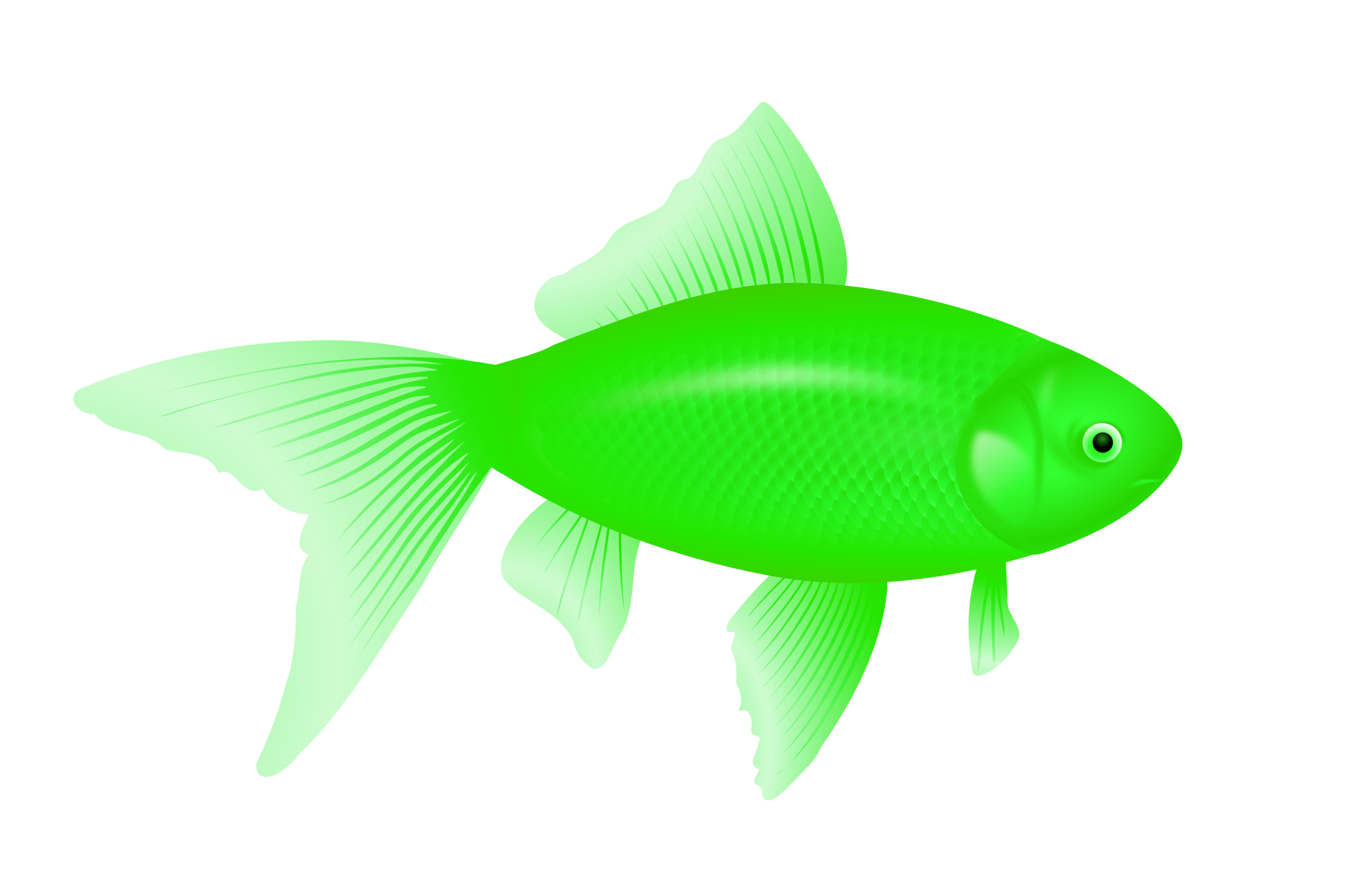 Green fish clipart clipart suggest for Image of fish
