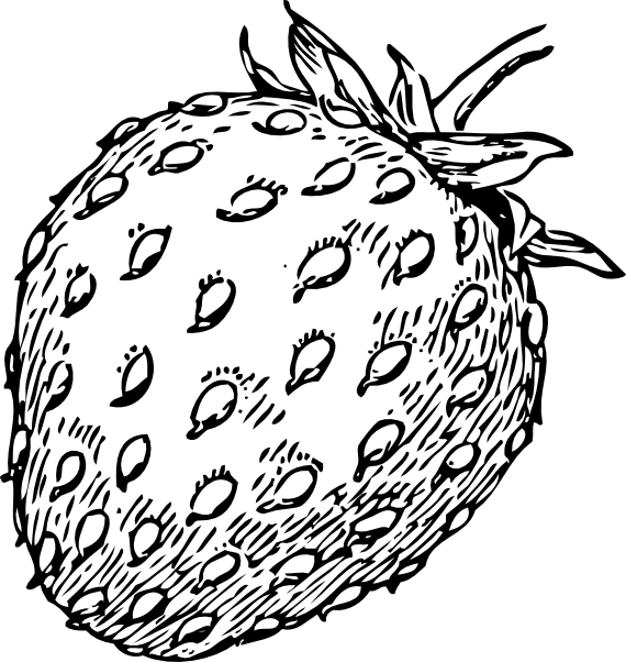 Strawberry 23 Clip Art At Clker Com   Vector Clip Art Online Royalty