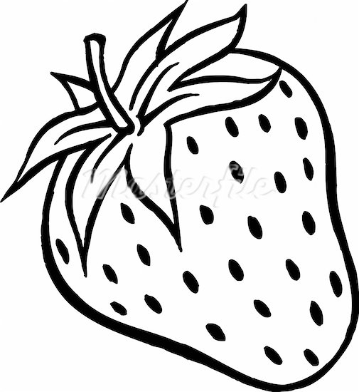 Strawberry Clipart Black And White   Clipart Panda   Free Clipart