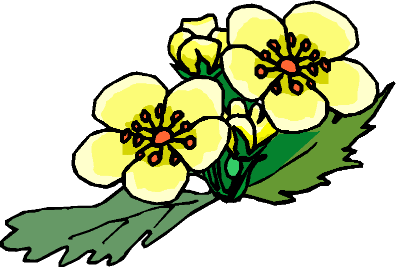 Red And Yellow Flower Free Clipart