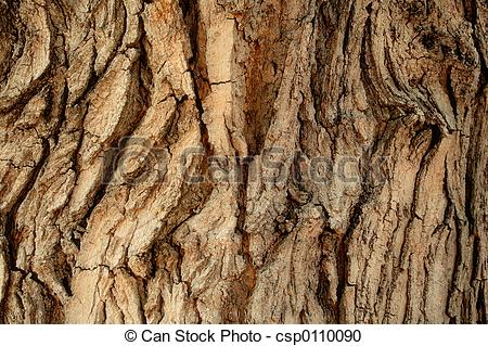 Tree Bark Pattern Clipart Tree Bark Pattern   Background  Add To