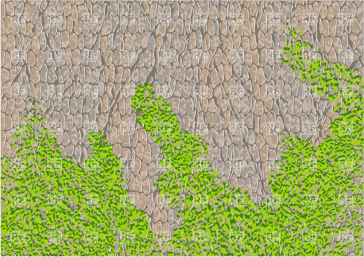 Tree Bark With Moss Download Royalty Free Vector Clipart  Eps