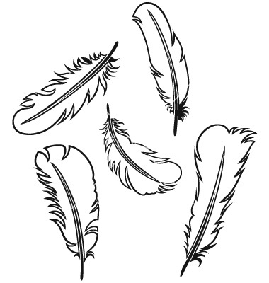 Turkey Feathers Outlines Clipart Suggest
