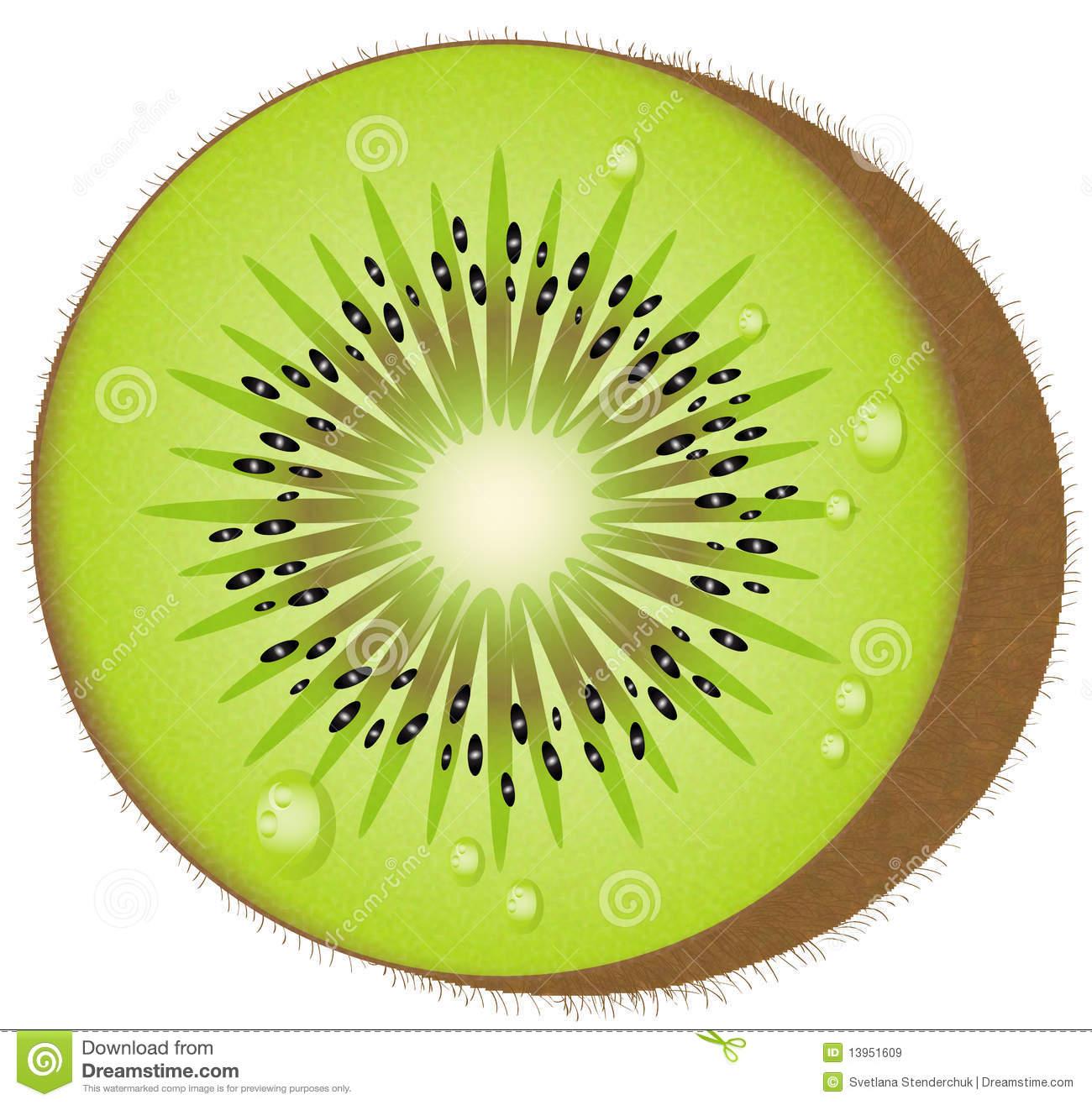 Kiwi Fruit Vector Roya...