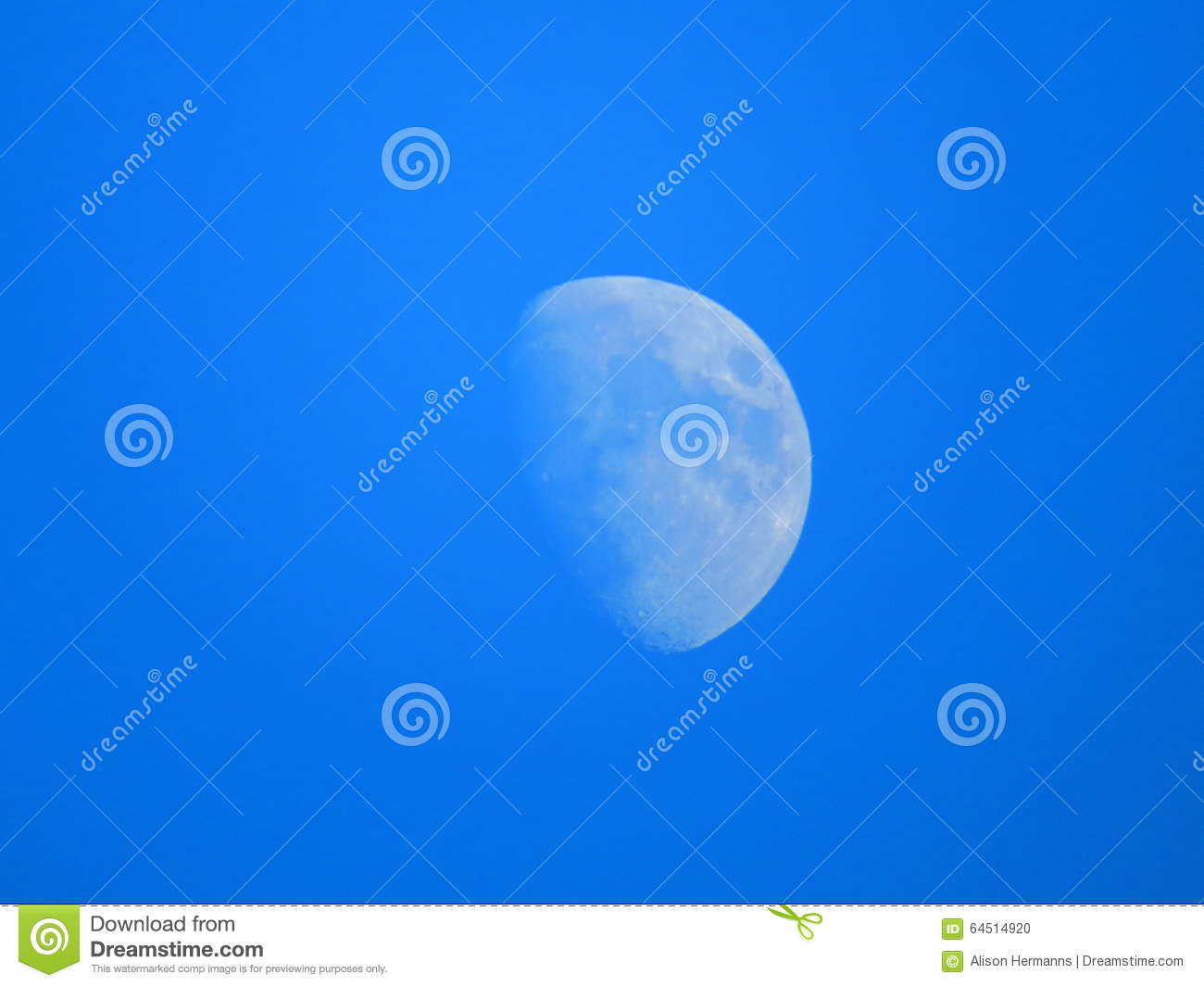 Moon Stock Photo   Image  64514920