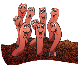 Omsh Kid Zone  Worms  Worms Worms