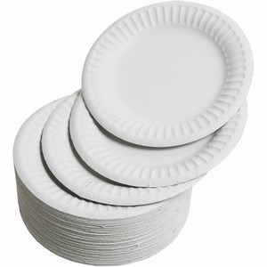 Change For The Planet 2   China Over Paper Plates   Silverfilings