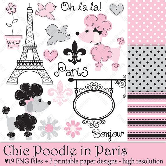 French Poodle Paris Paper   Books Worth Reading   Pinterest