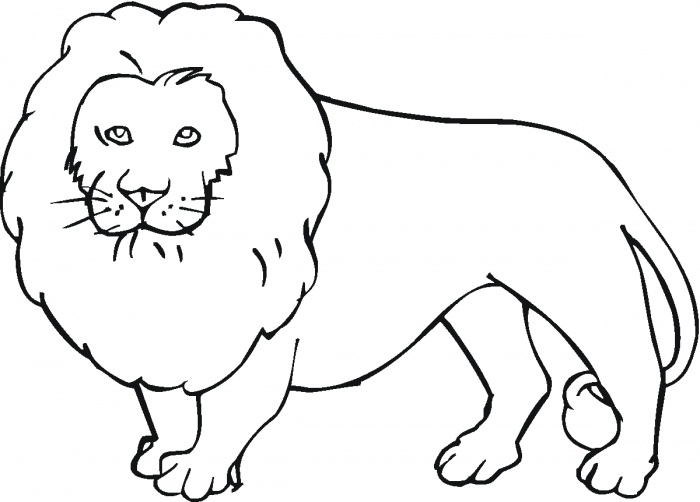 Lions Coloring Pages   Super Coloring