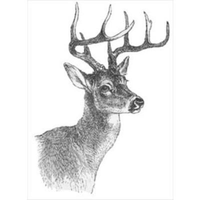 Deer Clipart Black And White   Clipart Panda   Free Clipart Images