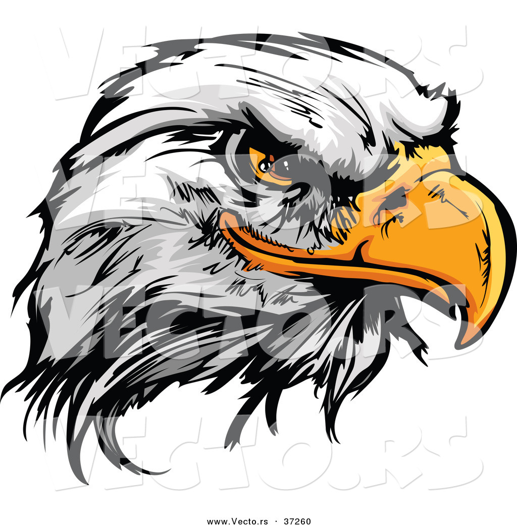 Eagle Head Clipart Black And White   Clipart Panda   Free Clipart