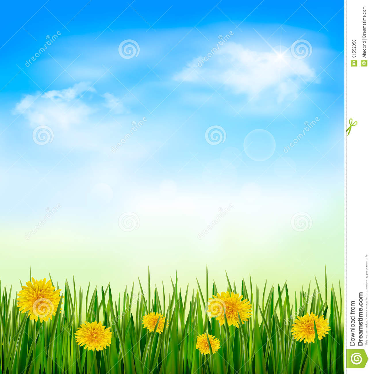 Nature Background Green Grass Flowers Blue Sky Vector   1294x1300
