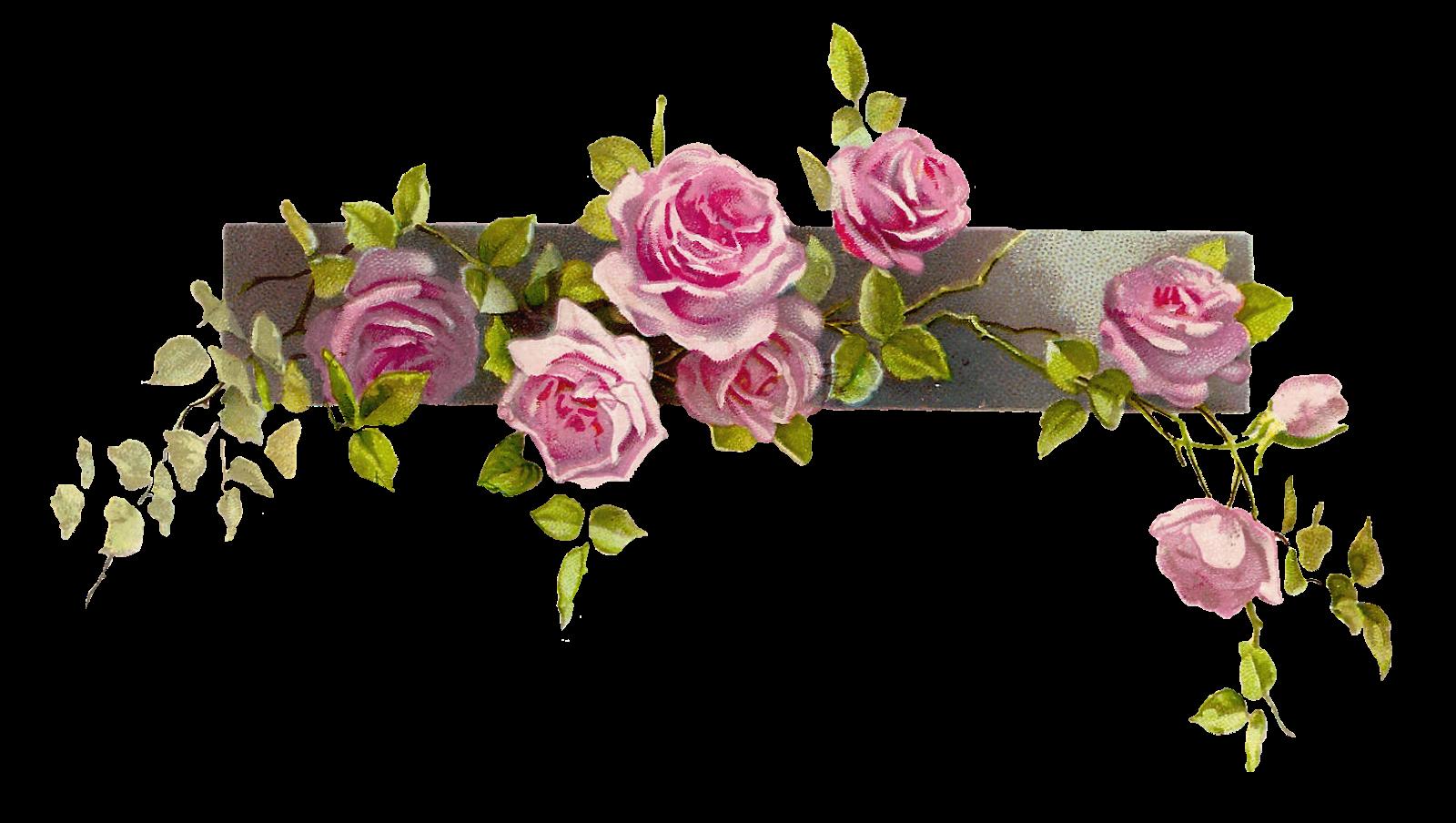 Border Flower Rose Line   Free Images At Clker Com   Vector Clip Art