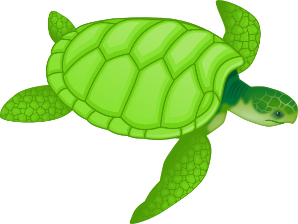 Green Sea Turtle Clip Art At Clker Com   Vector Clip Art Online
