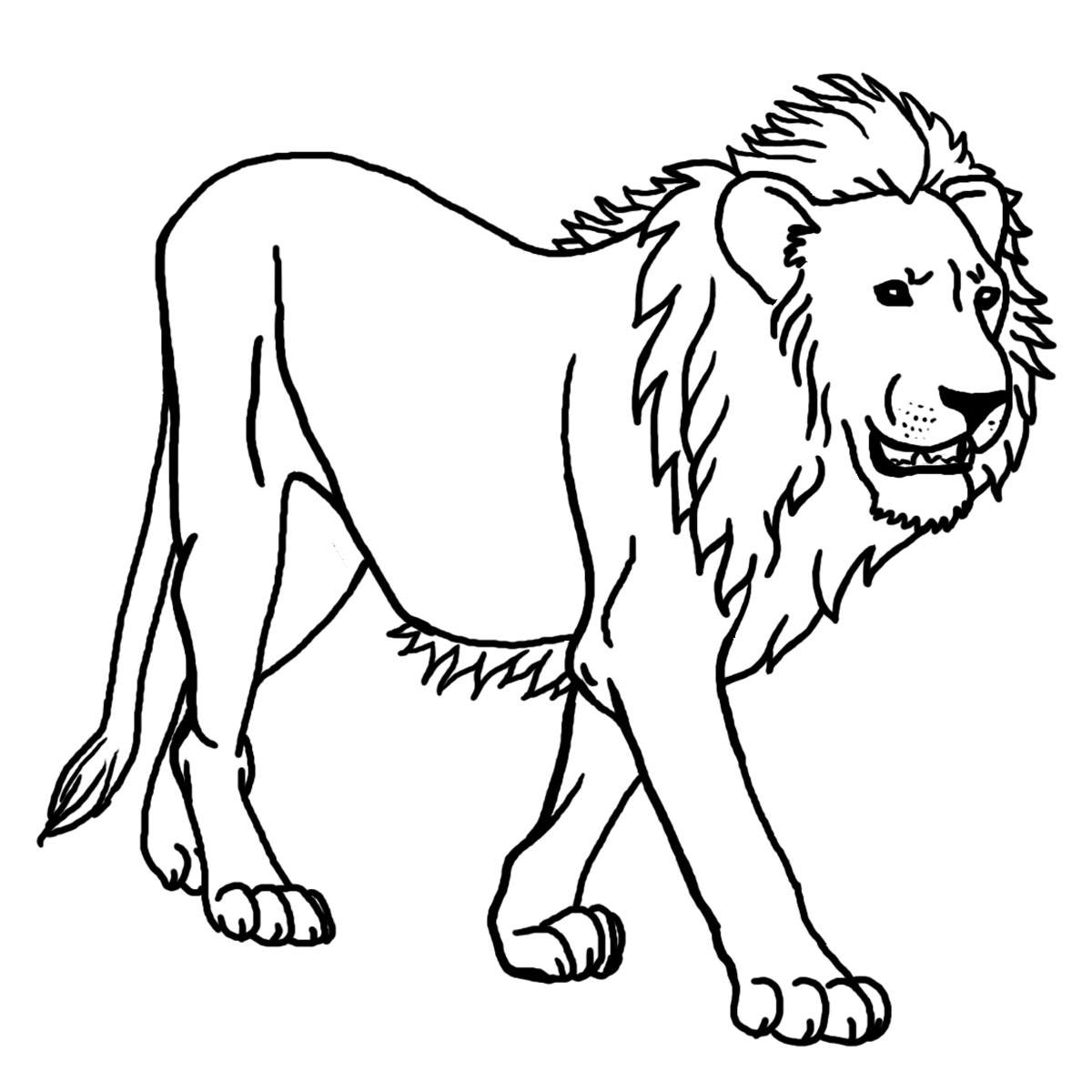 Black And White Lion Print   Clipart Best