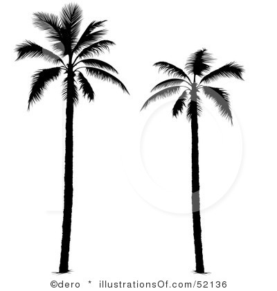 Palm Clip Art Royalty Free Palm Tree Clipart Illustration 52136 Jpg