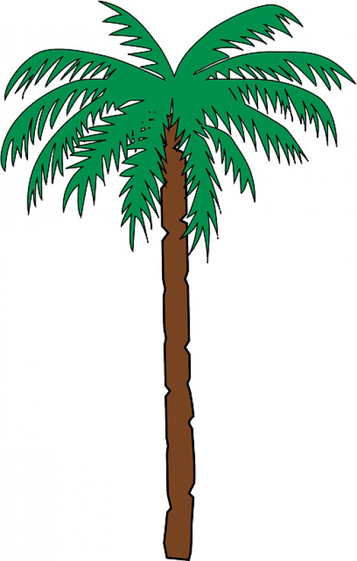palm tree clip art 0pcson clipart kid eating clip art images eating clipart panda