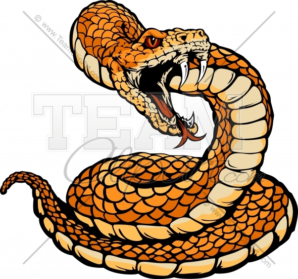 Rattlesnake Head Clipart   Clipart Panda   Free Clipart Images