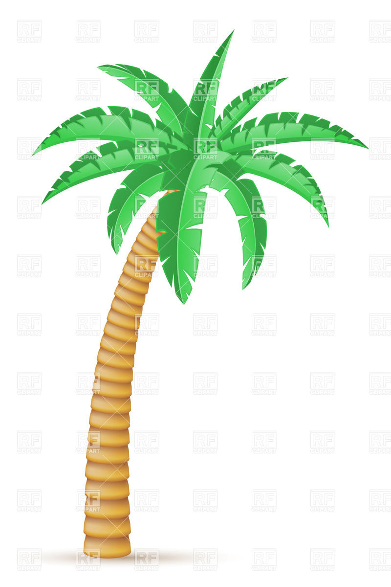 Tropical Palm Trees Clipart Palm Tree Clip Art Background
