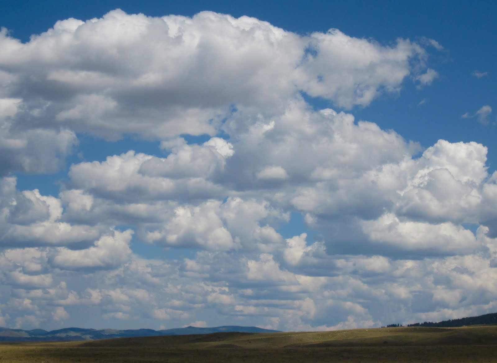 Cumulus Clouds For Kids Of Great Clouds Beginning