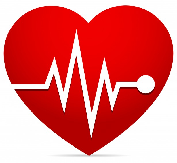 Heart Rate Ekg  Ecg  Heart Beat Free Stock Photo   Public Domain