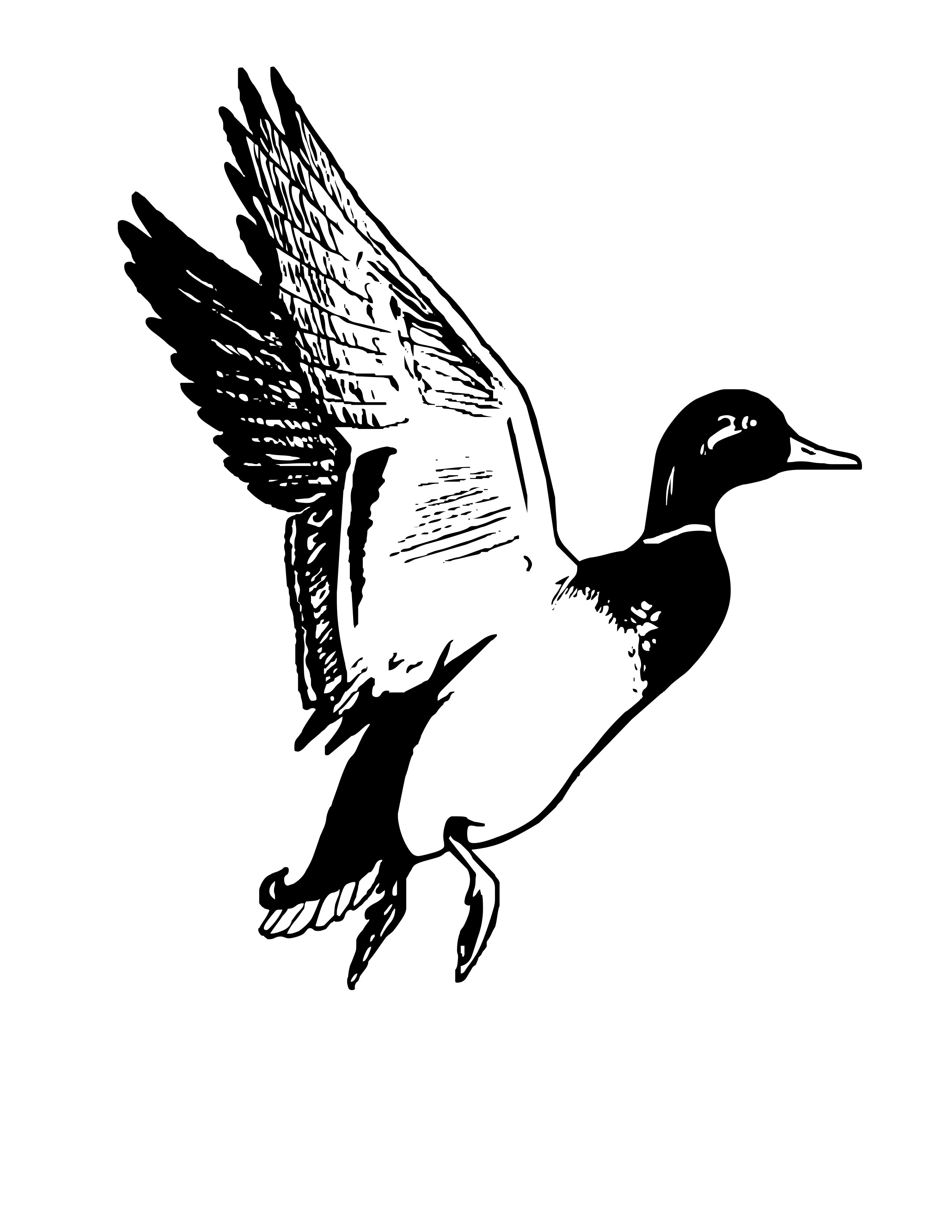 ducks tattoos coloring pages - photo#35