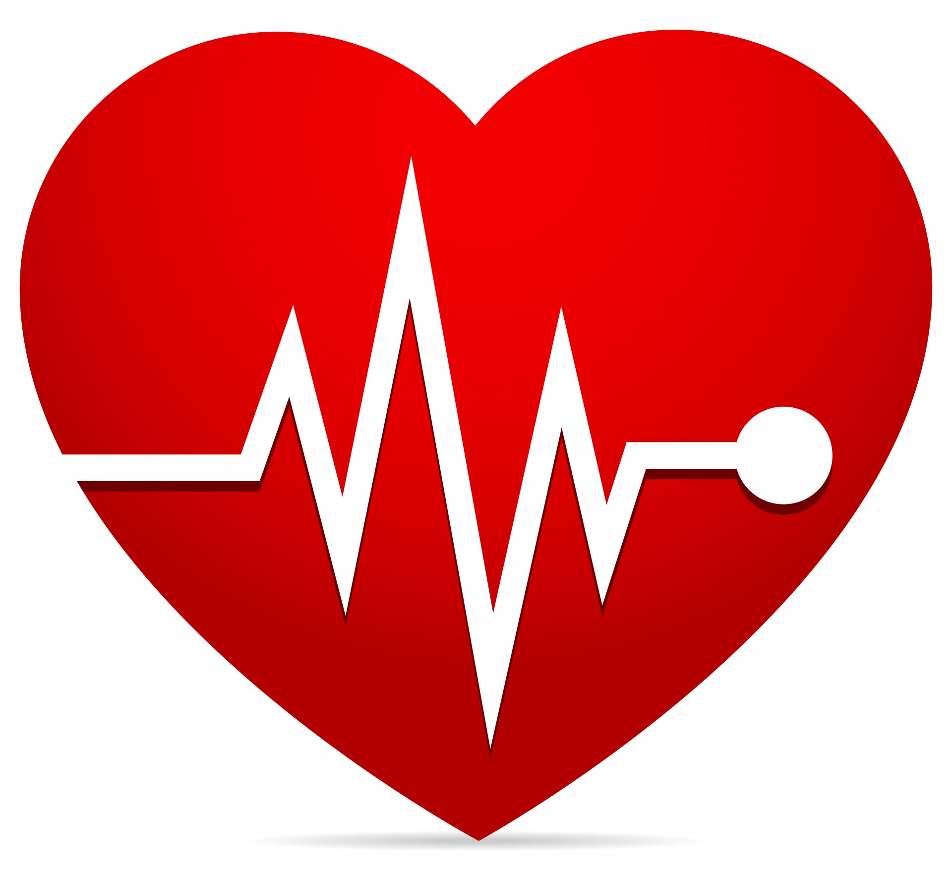 Heart Rate Ekg  Ecg  Heart Beat Free Stock Photo Hd   Public Domain