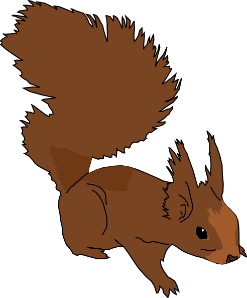 Funny Squirrel Clipart   Clipart Best   Clipart Best