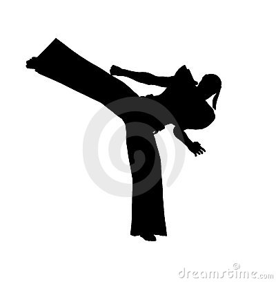 Ninja Kick Royalty Free Stock Image   Image  3258256