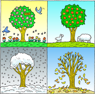 Four Seasons Clipart
