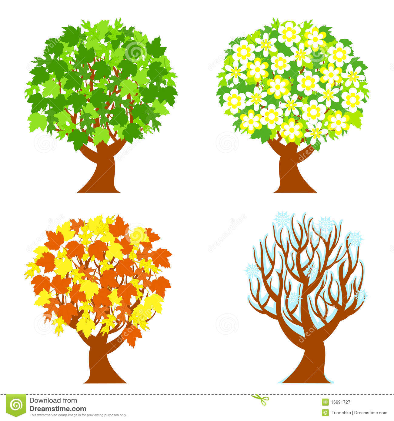Four Seasons Trees Royalty Free Stock Photography   Image  16991727