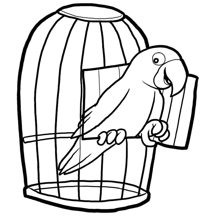Parrot In A Cage Colouring Pages