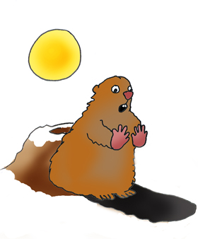 Image result for groundhog shadow