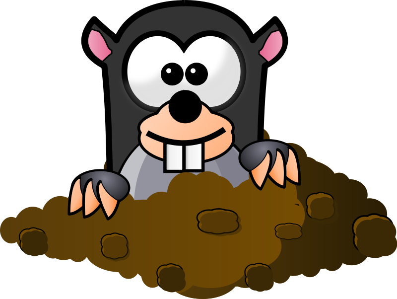 Free Cartoon Mole Clip Art