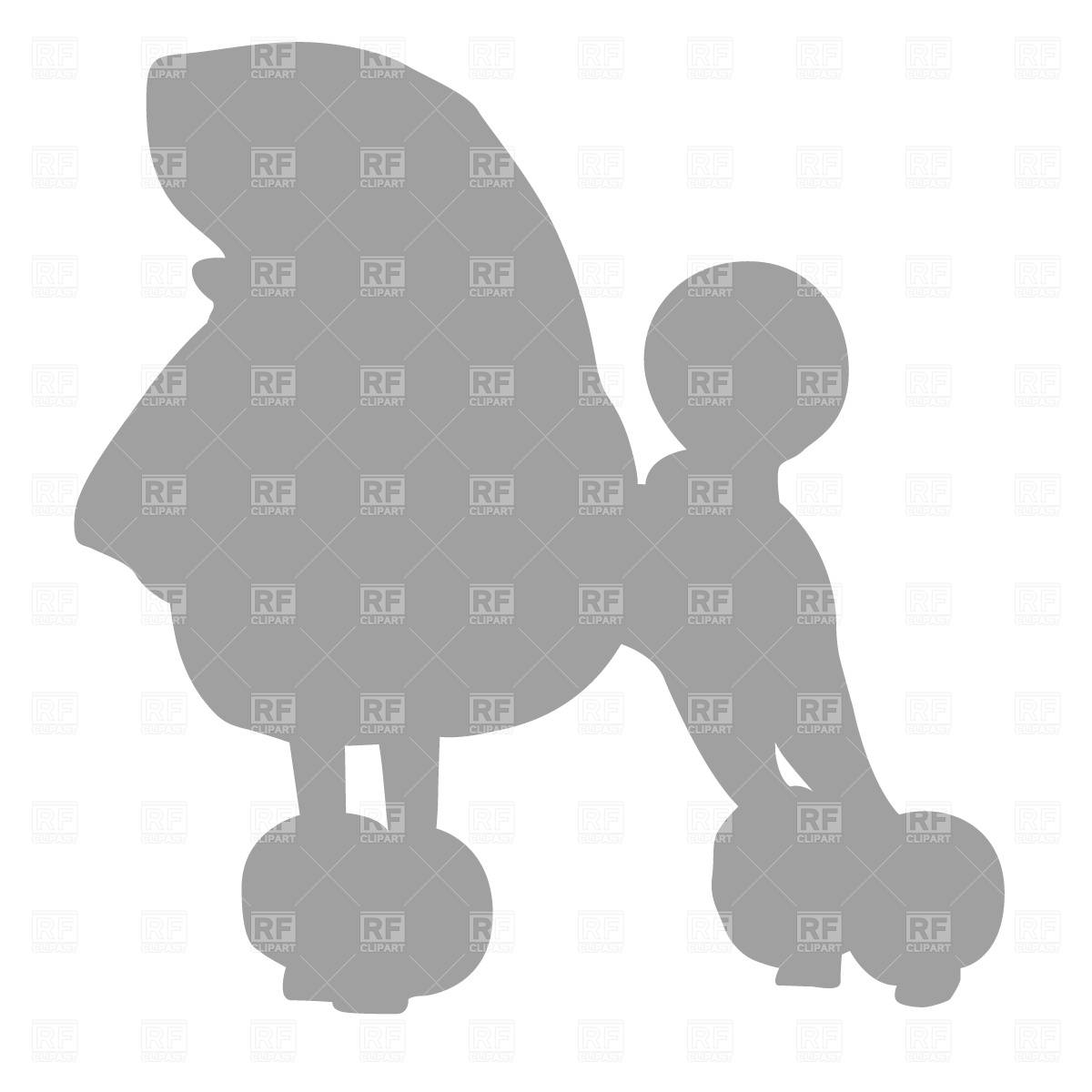 Poodle Silhouette Download Royalty Free Vector Clipart  Eps