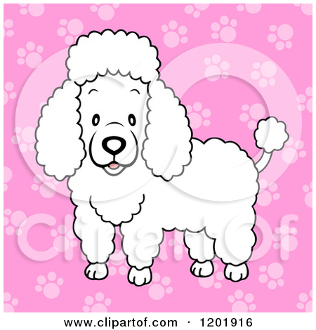 Royalty Free  Rf  White Poodle Clipart   Illustrations  1