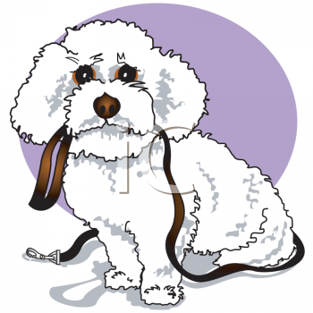 This Cartoon Poodle Puppy Holding His Leash Clip Art Image Is