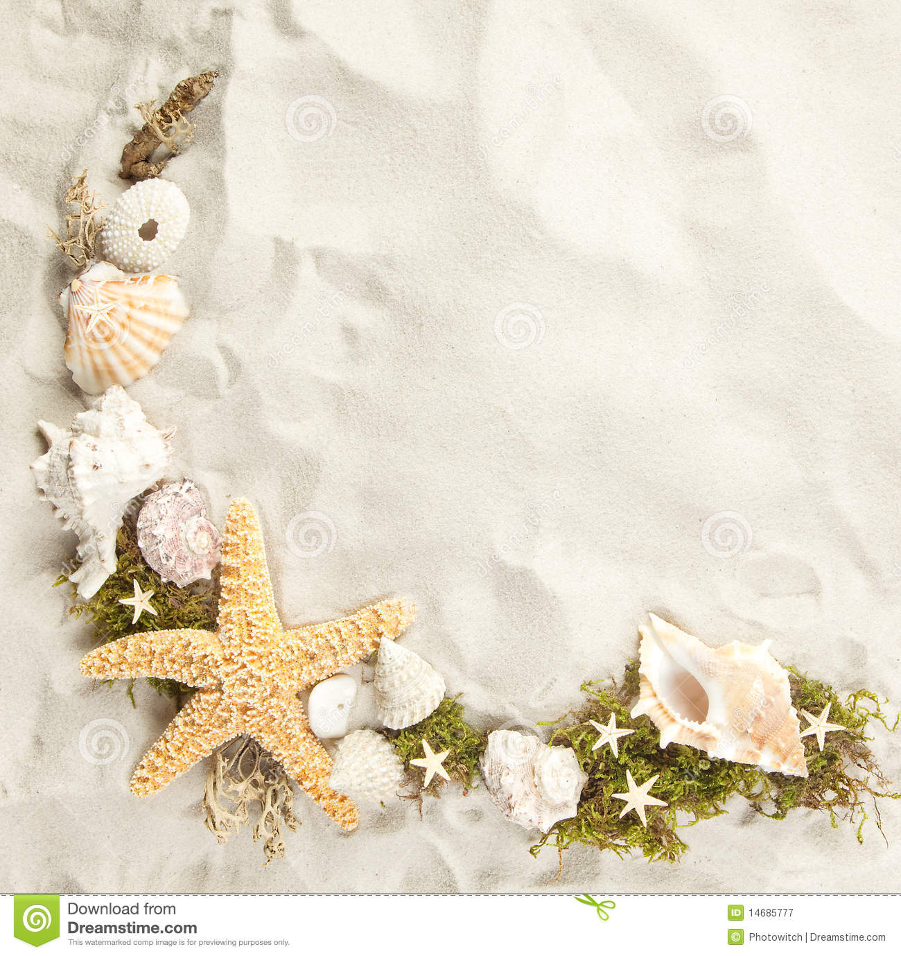 Shell Border Clip Art Border Of Seashells Royalty