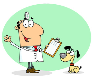 Art Images Veterinarian Stock Photos   Clipart Veterinarian Pictures
