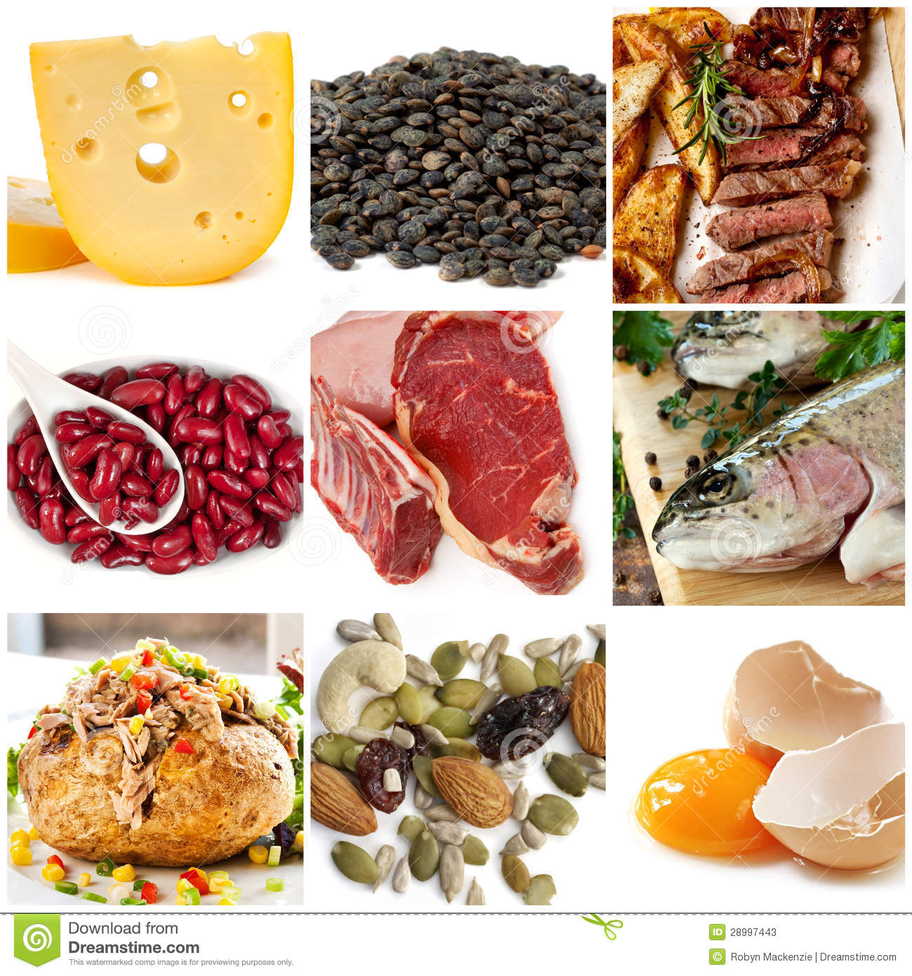 Food Sources Of Protein Including Cheese Lentils Red And White Meat